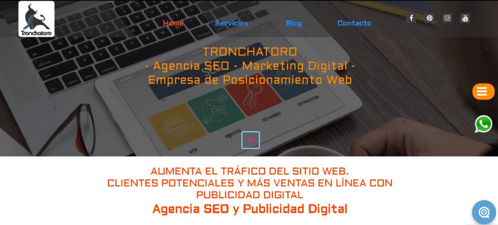 Agencia SEO Tronchatoro